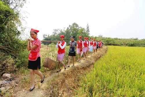 Nữ tiếp viên hàng không TQ đi giày cao gót gặt lúa - 7