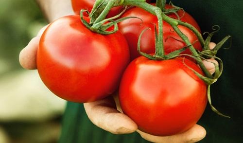 Cách nhận biết rau củ quả nhiễm độc nhất định phải biết - 2