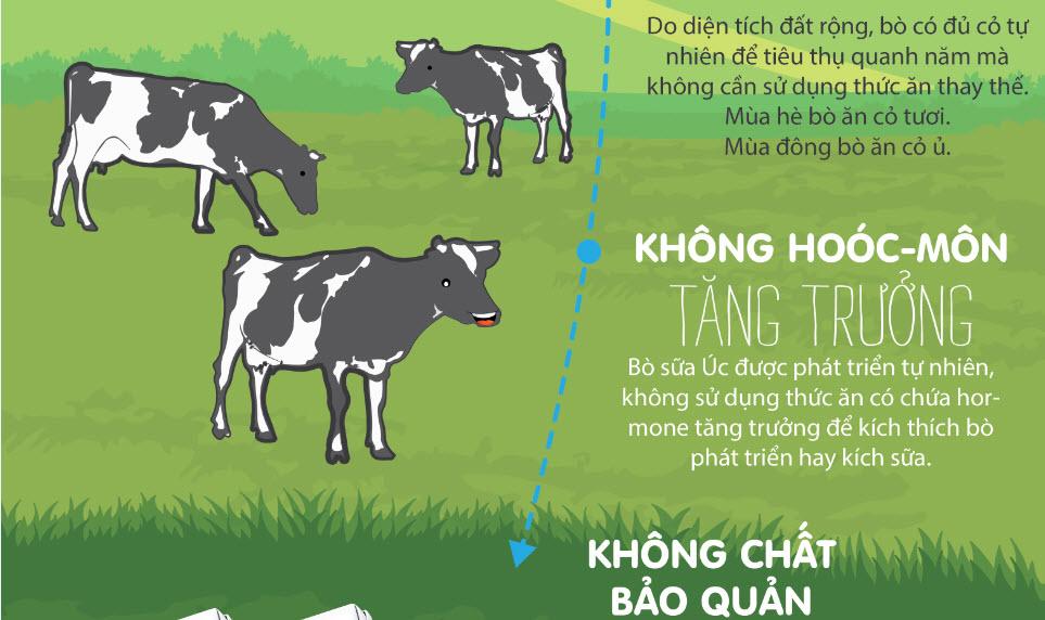 """Cuộc sống """"Năm Không"""" của đàn bò nông trại thung lũng Goul Burn - 3"""