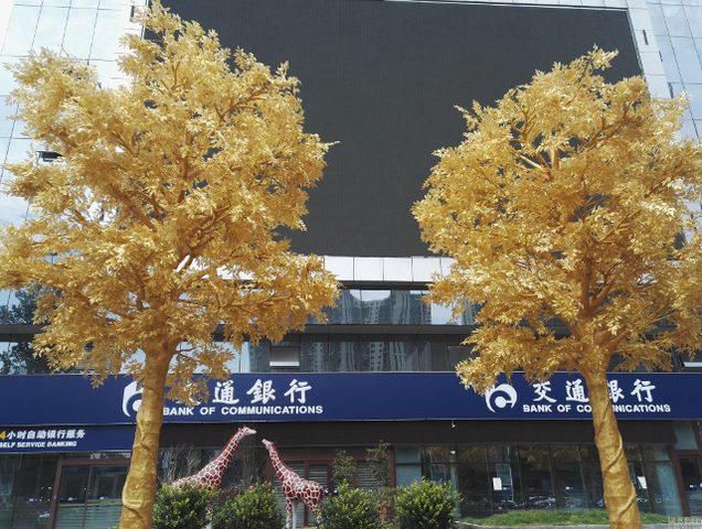 Lóa mắt với hàng cây bọc vàng ròng trên phố - 1