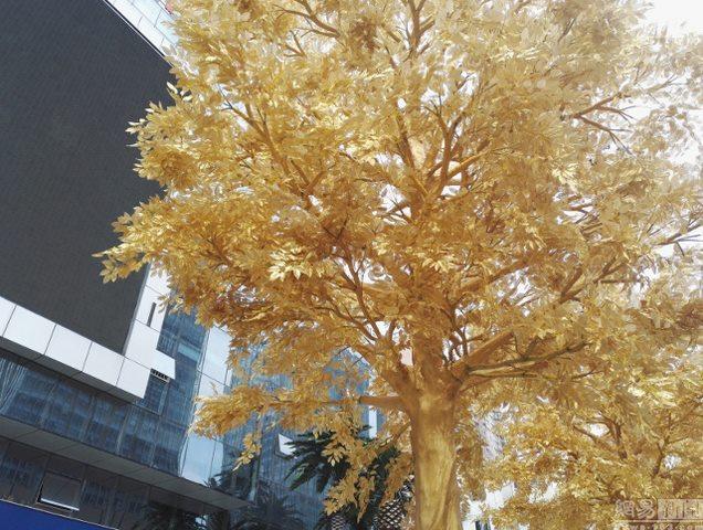 Lóa mắt với hàng cây bọc vàng ròng trên phố - 4