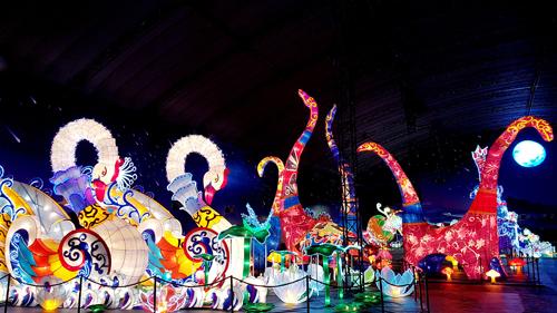 Ngắm lồng đèn hình muông thú khổng lồ ở Sài Gòn - 2