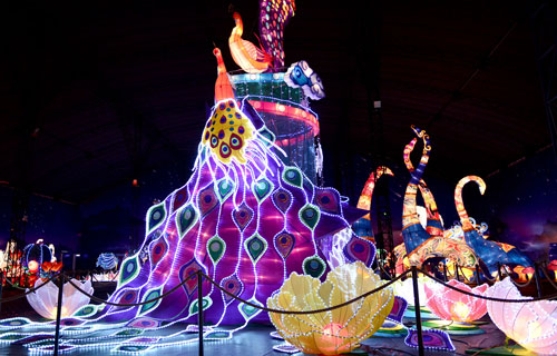 Ngắm lồng đèn hình muông thú khổng lồ ở Sài Gòn - 11