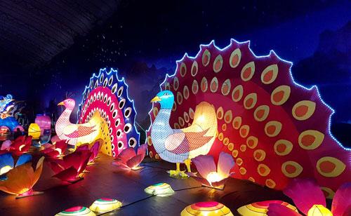 Ngắm lồng đèn hình muông thú khổng lồ ở Sài Gòn - 12