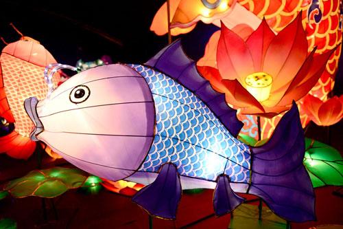 Ngắm lồng đèn hình muông thú khổng lồ ở Sài Gòn - 6