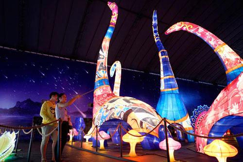 Ngắm lồng đèn hình muông thú khổng lồ ở Sài Gòn - 16