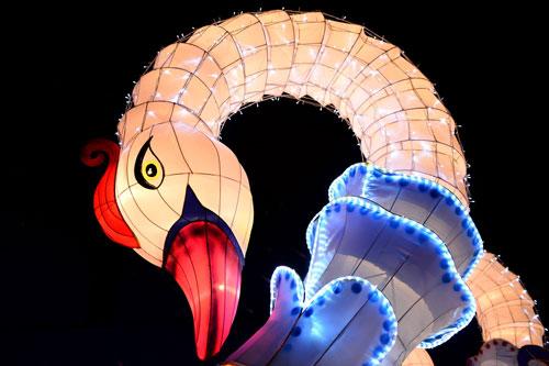 Ngắm lồng đèn hình muông thú khổng lồ ở Sài Gòn - 15
