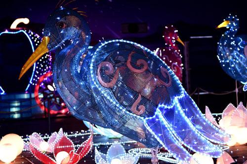 Ngắm lồng đèn hình muông thú khổng lồ ở Sài Gòn - 14