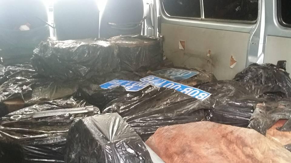 Bắt ô tô biển xanh rởm chất đầy gỗ lậu và biển số 80B giả - 2