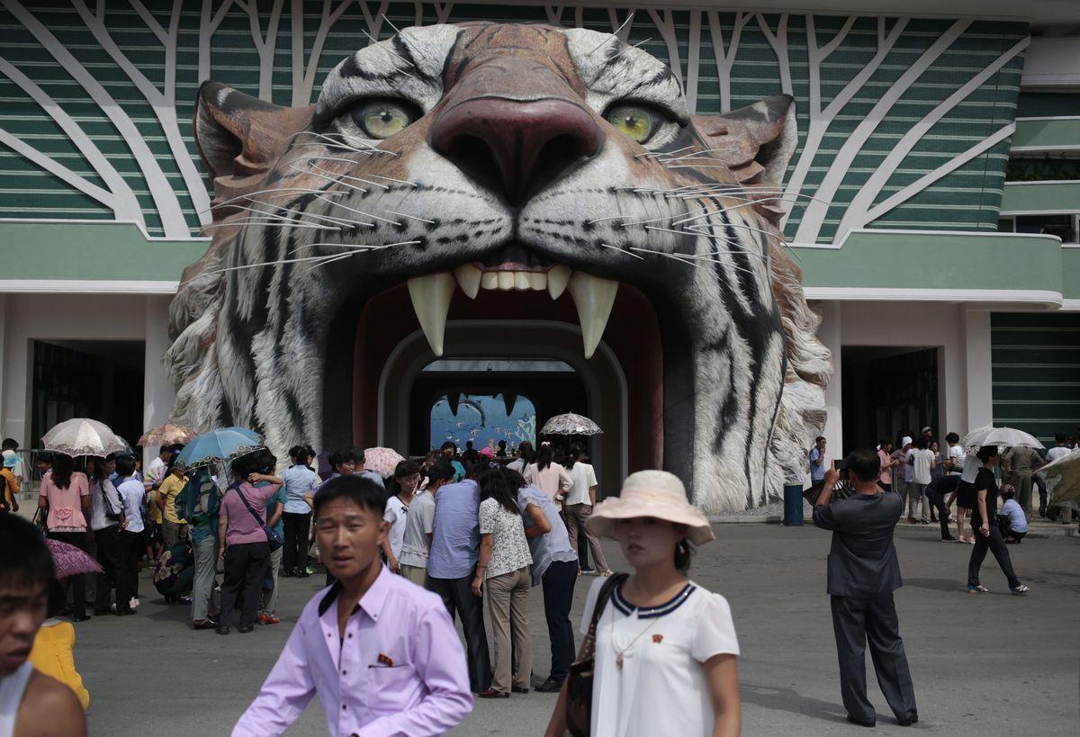 Đi sở thú ở Triều Tiên - 10
