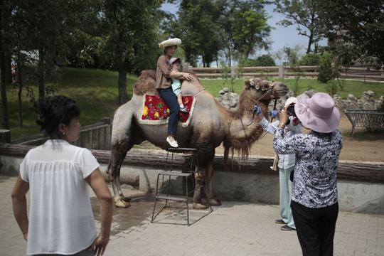 Đi sở thú ở Triều Tiên - 4