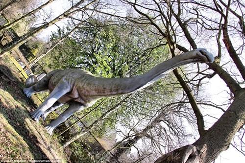 Vẻ bí ẩn bên trong công viên khủng long bị bỏ hoang - 4