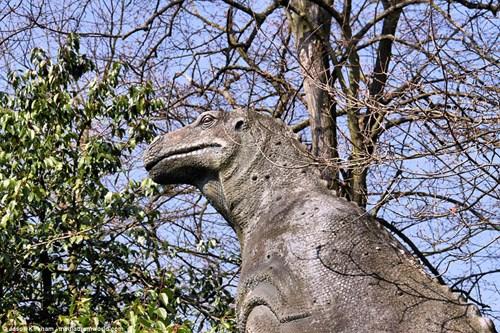 Vẻ bí ẩn bên trong công viên khủng long bị bỏ hoang - 9