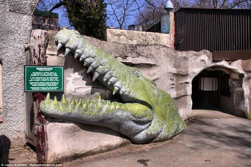 Vẻ bí ẩn bên trong công viên khủng long bị bỏ hoang - 2