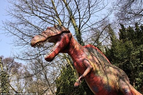 Vẻ bí ẩn bên trong công viên khủng long bị bỏ hoang - 3