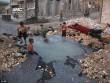 Trẻ em Syria biến hố bom thành hồ bơi giữa phố