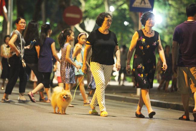 Chó nhe nanh, thè lưỡi tung tăng dạo phố đi bộ Hồ Gươm - 4