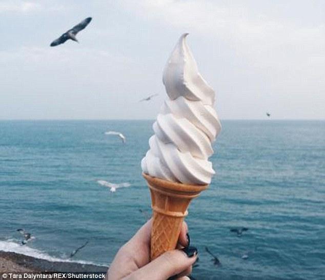 Hải âu táo tợn lao vào cướp kem trên tay người - 1