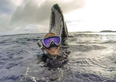 """Chàng trai gây """"sốt"""" với bức ảnh tự sướng với cá voi - 1"""