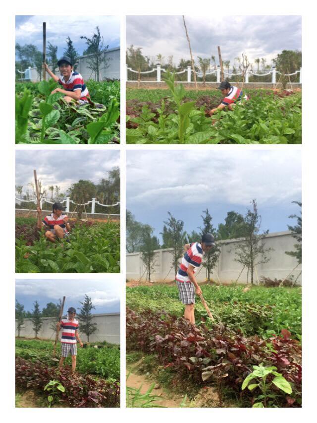 Kiếm tiền tỉ, Hoài Linh vẫn tự tay trồng rau nuôi gà - 1