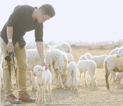 """Đến cánh đồng cừu đang """"hót hòn họt"""" ở Bà Rịa-Vũng Tàu - 4"""