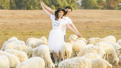 """Đến cánh đồng cừu đang """"hót hòn họt"""" ở Bà Rịa-Vũng Tàu - 3"""