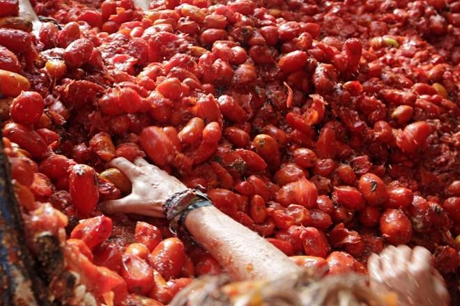 """Cận cảnh """"cuộc chiến cà chua"""" lớn nhất thế giới - 8"""
