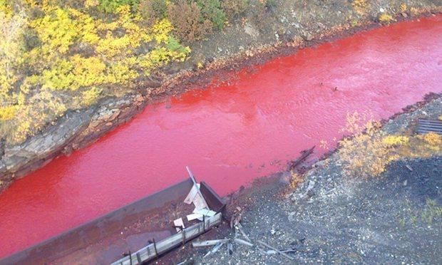 Dòng sông đỏ lòm như máu khiến dân Nga hoảng sợ - 2