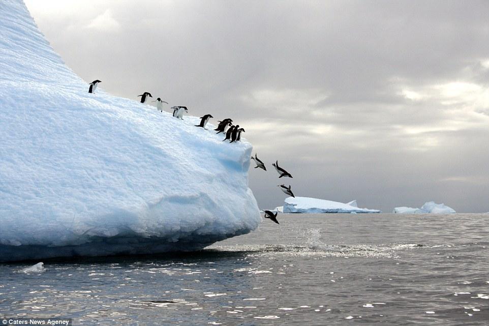 Ảnh: Cuộc sống ở nơi lạnh nhất trái đất - 3