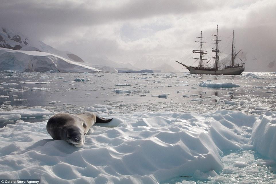 Ảnh: Cuộc sống ở nơi lạnh nhất trái đất - 10
