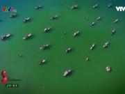 Một ngày tại xã đảo Tam Hải