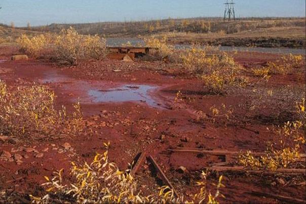 Lý do sông chuyển màu đỏ lòm như máu bí ẩn ở Nga - 2