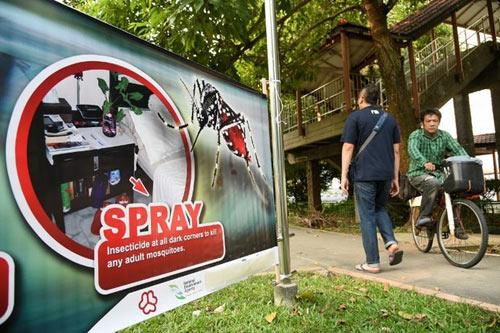 Thái Lan chủ quan trước virus Zika, hàng chục ca nhiễm mới - 1