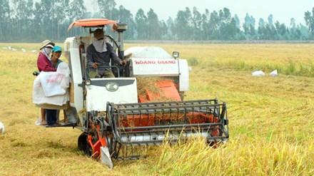 Thu hút đầu tư vào nông nghiệp: Doanh nghiệp không đi xin - 1