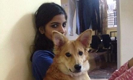 Cô gái từ chối lời cầu hôn vì không được nuôi chó - 1