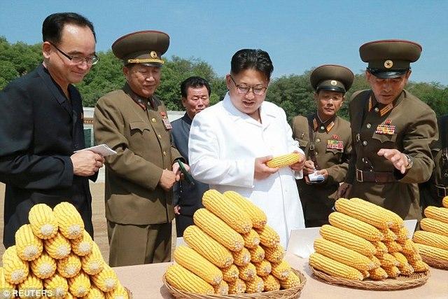Ảnh Kim Jong-un tươi cười xuất hiện sau đợt lũ lịch sử - 2