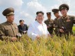 Ảnh Kim Jong-un tươi cười xuất hiện sau đợt lũ lịch sử