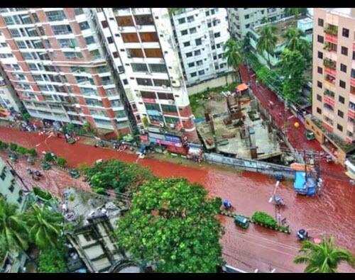 Phố xá biến thành sông máu đáng sợ sau lễ tế động vật - 2