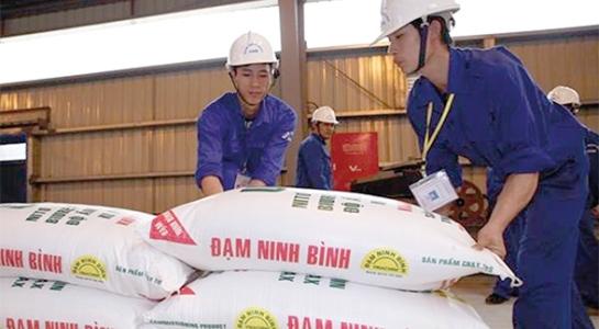 Đạm Ninh Bình xin cứu, Bộ Tài chính nói lời ăn lỗ chịu - 1