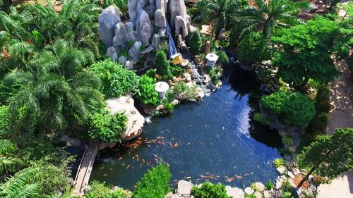 Sài Gòn cuối tuần kéo nhau xuống Vườn Xoài tận hưởng không gian xanh - 4