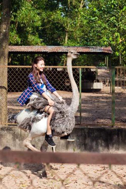 Sài Gòn cuối tuần kéo nhau xuống Vườn Xoài tận hưởng không gian xanh - 6