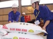 Đạm Ninh Bình xin cứu, Bộ Tài chính nói lời ăn lỗ chịu