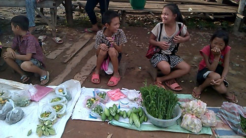 Cô gái Việt du lịch bằng xe đạp qua 4 quốc gia - 2