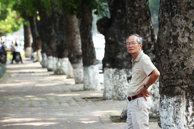 """Ngắm những """"lão xà cừ"""" trên đường Kim Mã trước ngày bứng gốc - 8"""