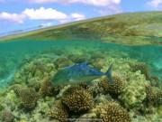 Du lịch - Kho báu chưa được khám phá ở Hawaii