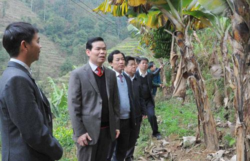 Cả nhà Bí thư Tỉnh ủy Hà Giang làm quan - 1