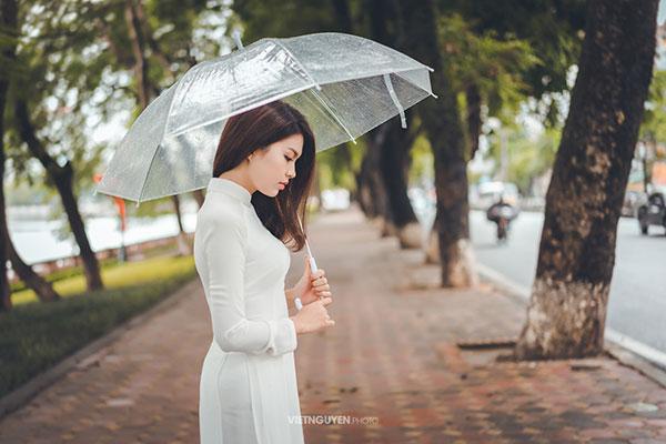 Hoa khôi SV Hà Nội khoe sắc bên hàng cây cổ thụ Thủ Lệ - 2