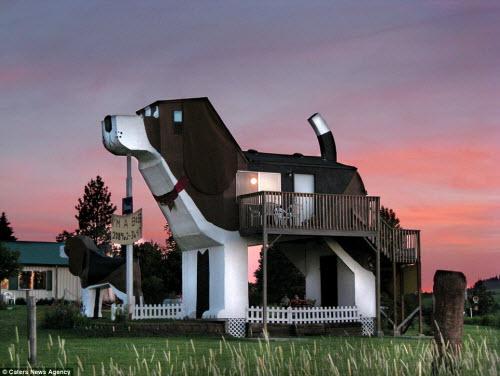 Những ngôi nhà hình động vật kỳ dị nhất thế giới - 6