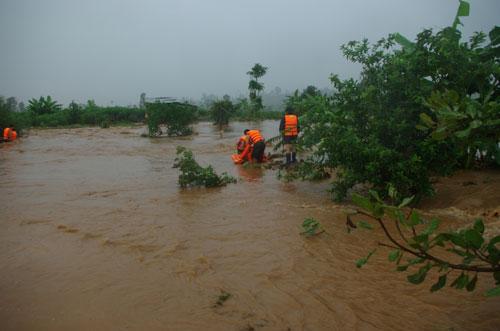Chùm ảnh: Cứu 6 người dân trèo trên cây tránh lũ dữ - 2