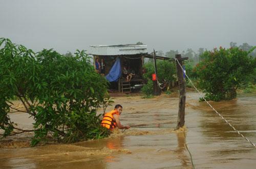 Chùm ảnh: Cứu 6 người dân trèo trên cây tránh lũ dữ - 4